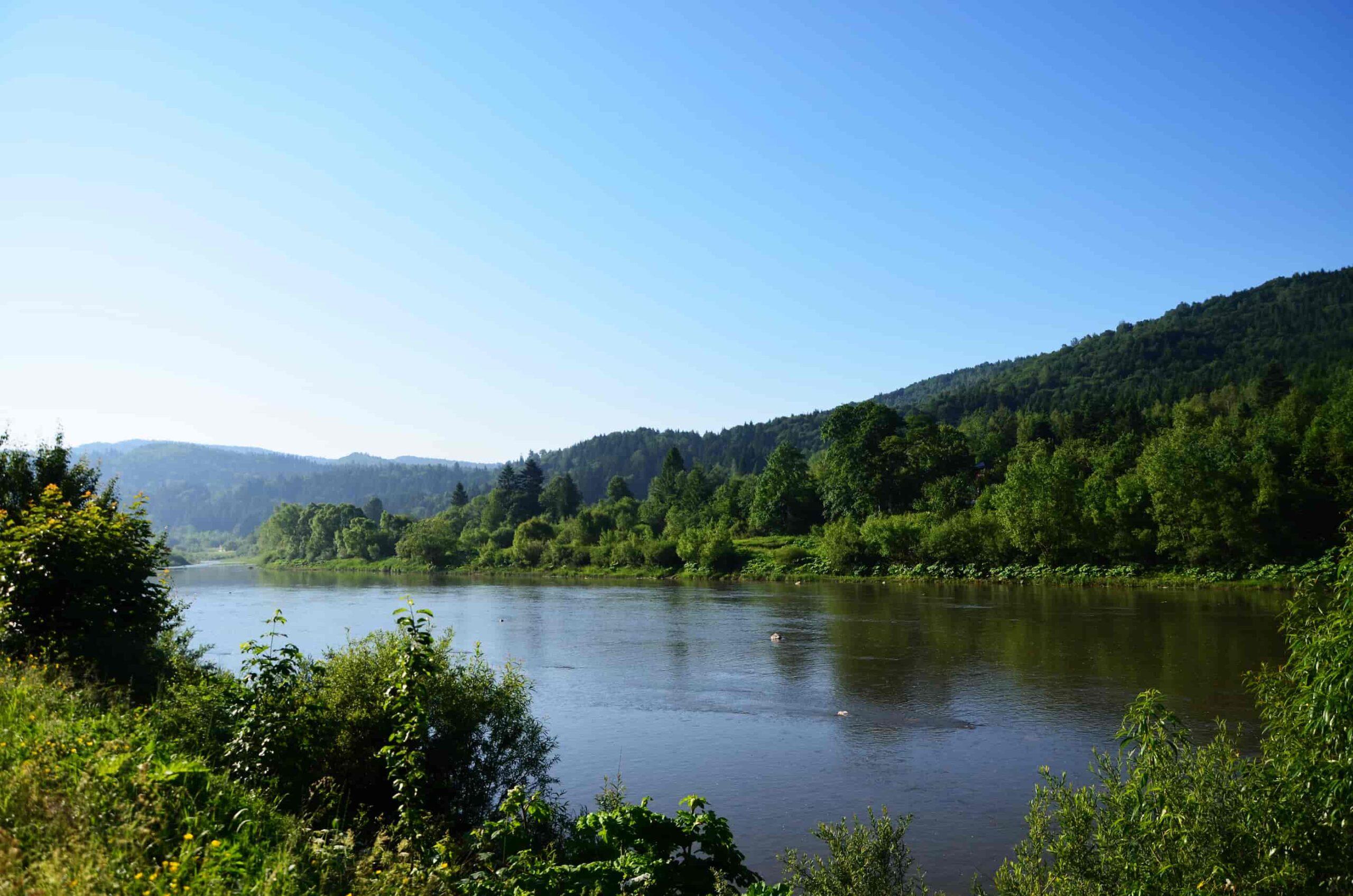 река Стрый в карпатах