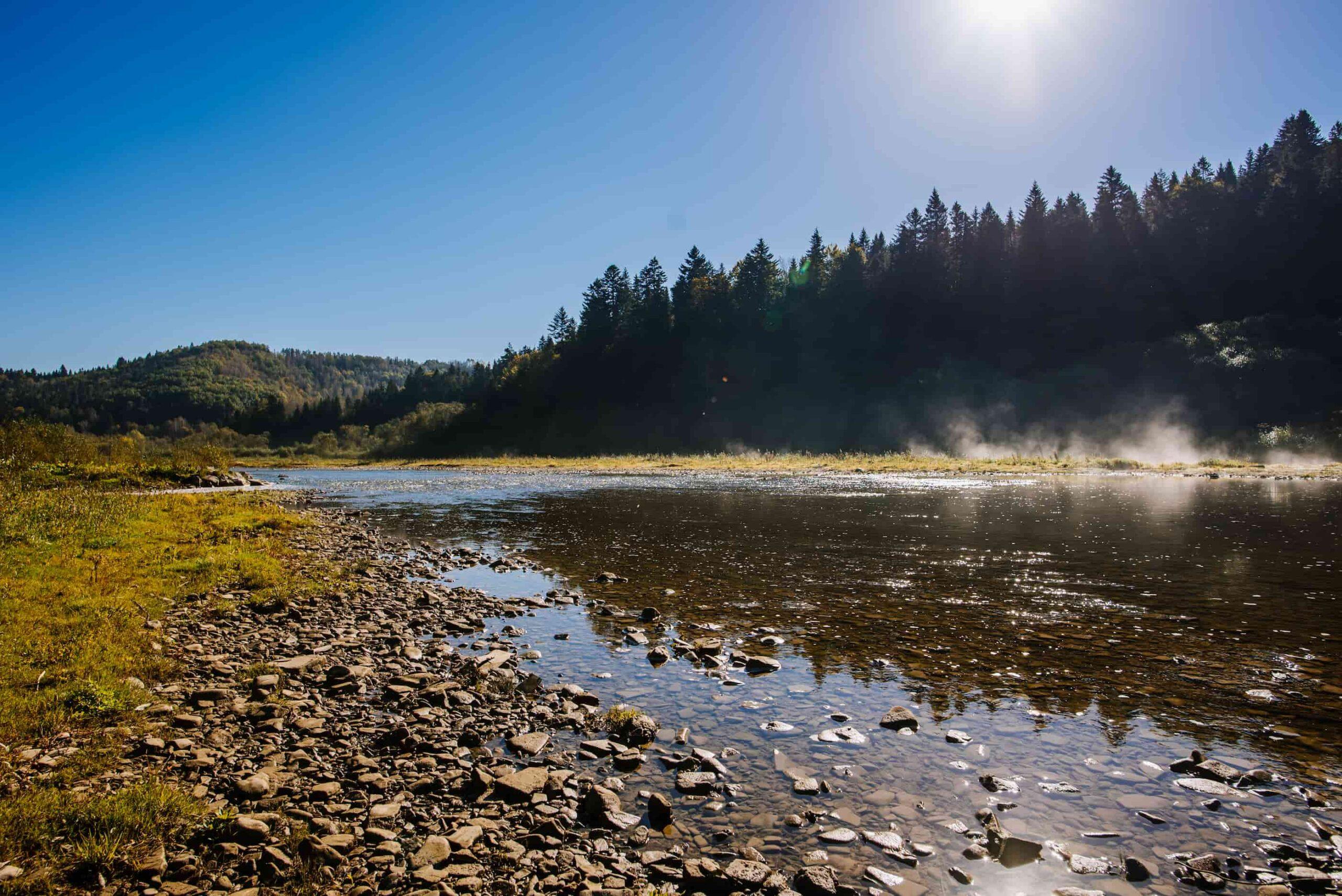 карпатская река весной