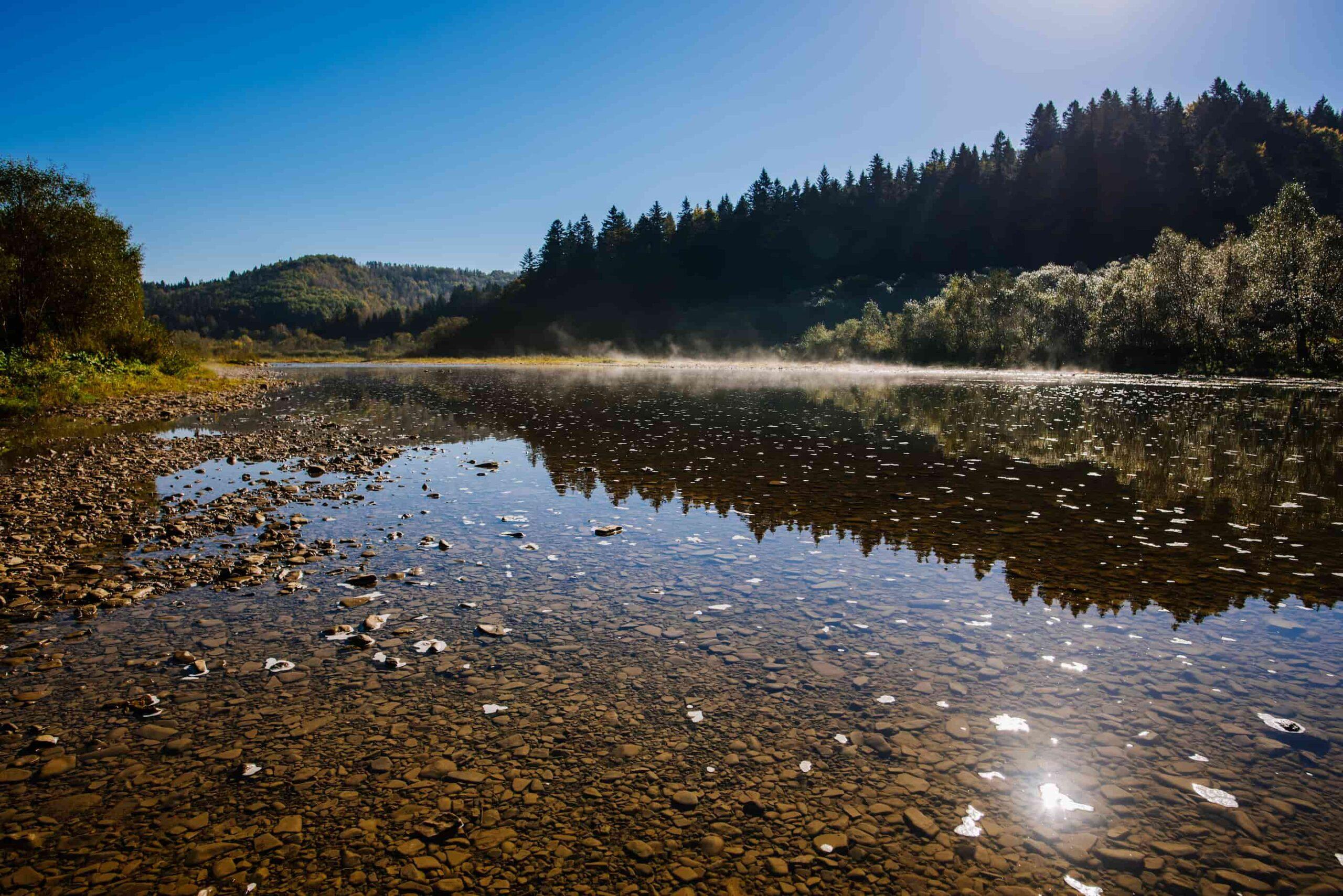 горная речка в Карпатах